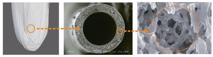mambrana-diercon